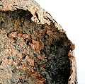 Copper-hck10b.jpg