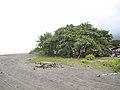 Costa Rica (6093510739).jpg