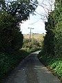 Country Lane - geograph.org.uk - 1573242.jpg