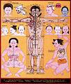 Cranial physiognomy (3750383426).jpg