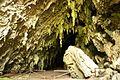 Cueva del Guácharo Entrada.jpg