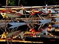 Currier's Seaplane Base on Moosehead Lake.jpg