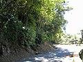 Curva Estrada da Graciosa - panoramio.jpg