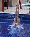 DHM Wasserspringen 1m weiblich A-Jugend (Martin Rulsch) 037.jpg