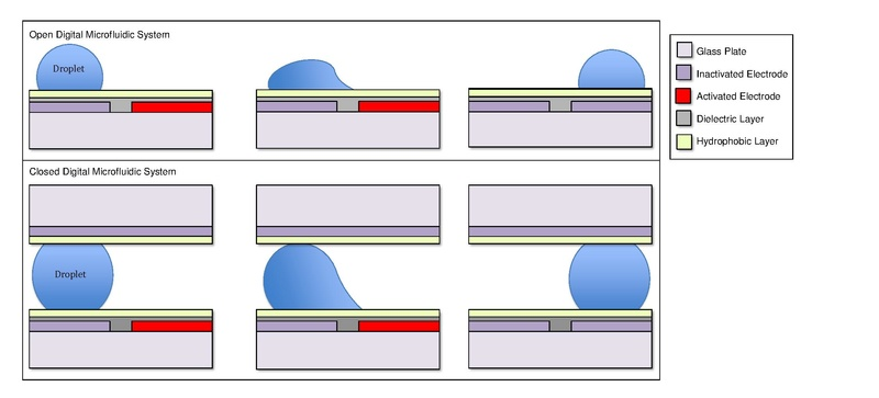 File:DMF open and closed system.pdf