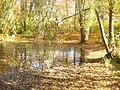 Dahlem - Messelteich (Messel Pond) - geo.hlipp.de - 30067.jpg