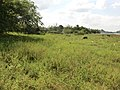 Dambulla, Sri Lanka - panoramio (81).jpg