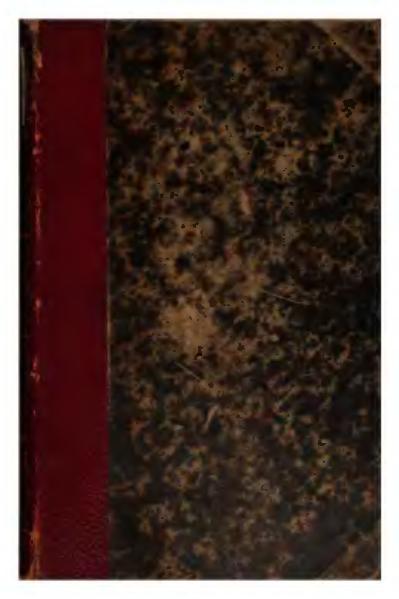 File:Dante Alighieri - La Vie nouvelle, traduction Durand Fardel.djvu