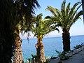 Datça & palms trees * ©Abdullah Kiyga - panoramio.jpg