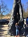 De bronzen Holle Boom bij Kraantje Lek 03.jpg