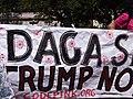 Defend DACA 9052053.jpg