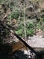 Delaware Water Gap National Recreation Area - Pennsylvania (5678356230).jpg