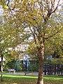 Delft - playground - panoramio.jpg