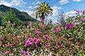 Die Landschaft bei Faial, Madeira. 02.jpg