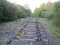 Dismantled railway looking north 1 - geograph.org.uk - 940432.jpg