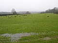 Dreary Day, South of Beckley - geograph.org.uk - 335182.jpg