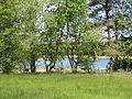 Dreenkrögen Kiessee 2014-05-15 3.JPG
