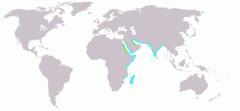 Dromas ardeola map.png
