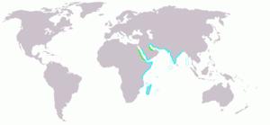 Crab-plover - Image: Dromas ardeola map