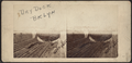 Dry dock, Brooklyn, from Robert N. Dennis collection of stereoscopic views.png