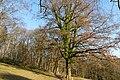 Duivelsberg P1420673.jpg
