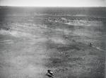 ETH-BIB-Fliehende Wildebeest (Gnus)-Kilimanjaroflug 1929-30-LBS MH02-07-0349.tif