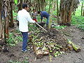 Ecuador composting method (Peru).JPG