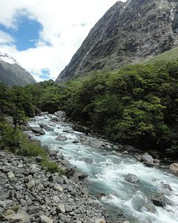 Eglinton River river of New Zealand