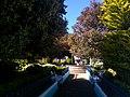 El parque - panoramio (1).jpg