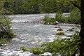 Elwha River 5144.JPG