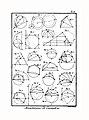 Encyclopédie méthodique - Planches, T8,Pl407-Amusemens-1-8.jpg