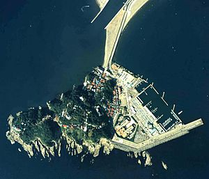 Enoshima - Aerial photograph - Ministry of Land, Infrastructure and National Transport, Land Image Information (2009)