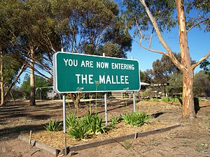 Mallee (Victoria) - Entering The Mallee, along the Sunraysia Highway.