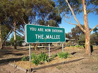 Division of Mallee - The Mallee, a region in Victoria from which the division takes its name from