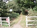 Entrance to path through woodland to north of Barnham - geograph.org.uk - 598628.jpg