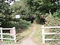 Entrance to path through woodland to north of Barnham - geograph.org.uk - 598628.jpg