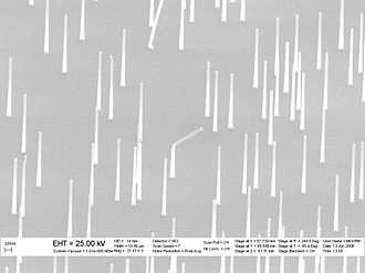 Nanowire - An SEM image of epitaxial nanowire heterostructures grown from catalytic gold nanoparticles.