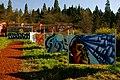 Eugene Oregon Graffiti Art (2411746081).jpg