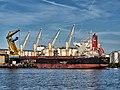 Ever Alliance (ship, 2011) IMO 9423255 Mercuriushaven, Port of Amsterdam photo 2.jpg