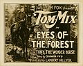 Eyes-of-the-Forest-1923-LC.jpg