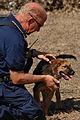 FEMA - 19407 - Photograph by Jocelyn Augustino taken on 09-07-2005 in Louisiana.jpg