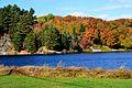 Fall Colours Huntsville.jpg