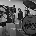 Fanclub1967Animals3.jpg