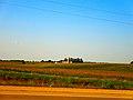 Farm near Windsor - panoramio.jpg