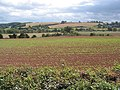 Farmland between Foy and Ingestone - geograph.org.uk - 557545.jpg
