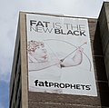 Fat is the new Black (30790252795).jpg