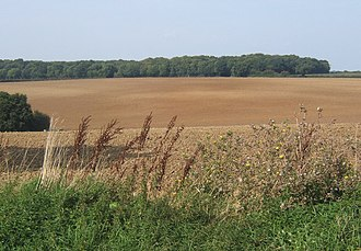 Alpheton - Fields north of Church Lane, Alpheton