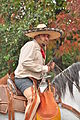 Fiestas Patrias Parade, South Park, Seattle, 2015 - 312 - the horses (21406560069).jpg