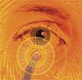 Fingerprint and retinal scan.jpg