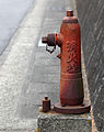 Fire hydrant 4.jpg